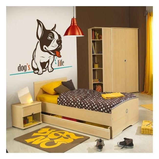 Décoratif vinyl vie de chien