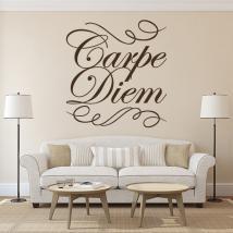 Vinyle décoratif Carpe Diem