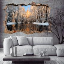 Vinyl 3D lac en hiver