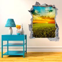 Coucher du soleil de vinyle mur 3D dans le domaine