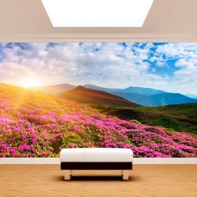 Photo mur murales fleurs dans les montagnes