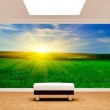Peintures murales photo soleil sur l'horizon