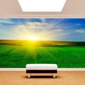 Peintures murales photo soleil dans l'horizon