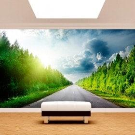 Route mur de peintures murales et des routes