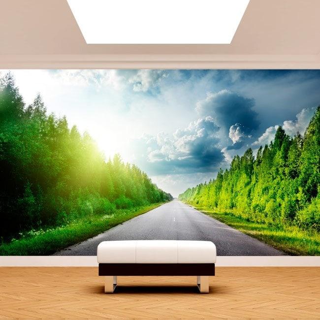 Pins et chemin de peintures murales wall photo