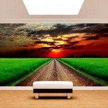 Chemin de peintures murales wall photo dans le domaine