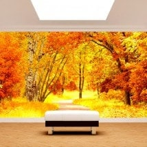 Fotomural route et arbres automne