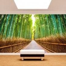 Bambous et chemin de peintures murales wall photo