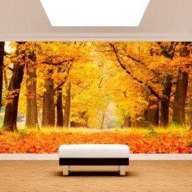 Automne arbres murales mur