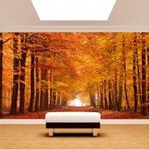 Photo mur murales route et arbres automne