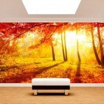 Feuilles de Fotomural arbres rouges automne