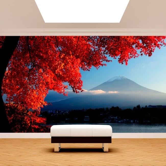 Photos murales Wall Mount Fuji