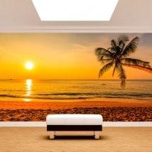 Fonds d'écran palmier coucher de soleil plage