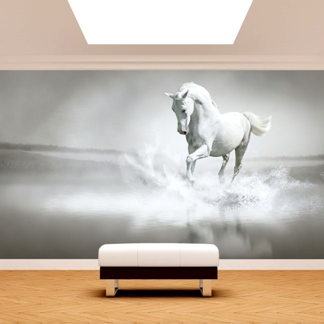 White horse Fotomural.