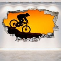 Mountain bike vinyl 3D