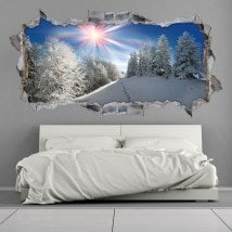 Rayons de soleil vinyle 3D montagnes neigeuses