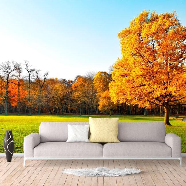 Fotomural arbres en automne