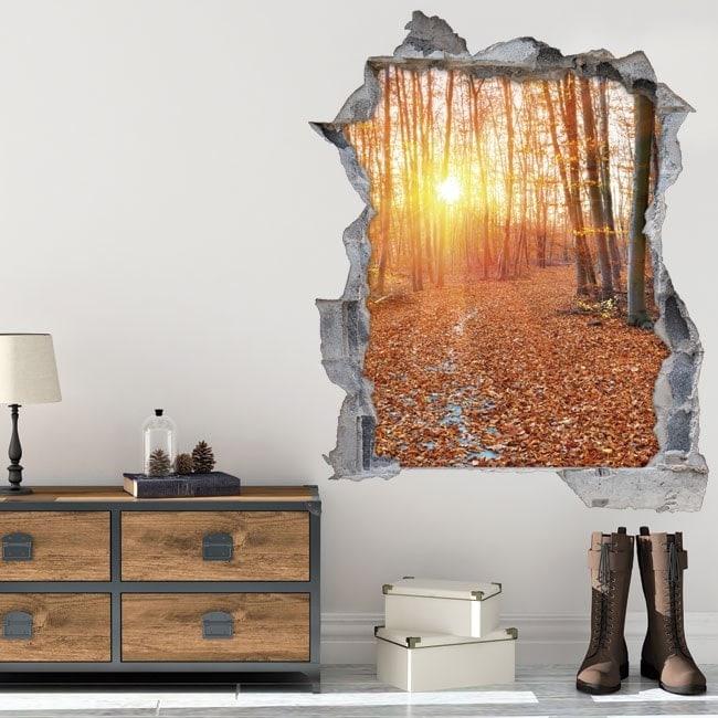 Vinyl 3D coucher de soleil dans la forêt
