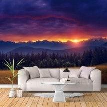 Peintures murales nature photo coucher de soleil