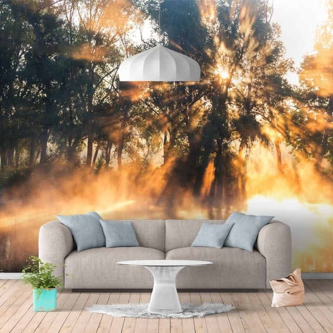 photo murale peintures murales des rayons de soleil sur le fleuve. Black Bedroom Furniture Sets. Home Design Ideas