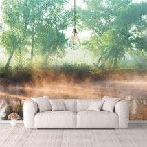 Photo mur murales coucher de soleil sur le lac