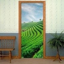 Autocollants pour la plantation de thé de portes