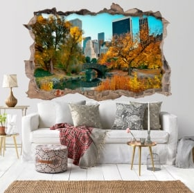 Vinyle Central Park New York 3D