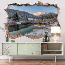 Vinyle réserve naturelle Zelenci 3D