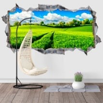 Vinyle décoratif nature 3D