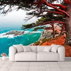 Papiers peints arbre de cèdre Rocky Island