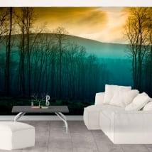 Papiers peints en vinyle arbres nature