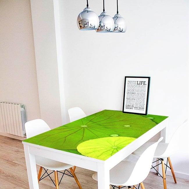 Vinyle décoratif tables nénuphars