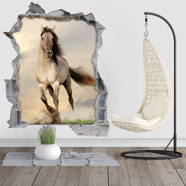 Vinyle trou paroi cheval 3d