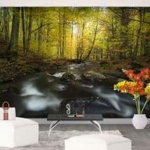 Peintures murales en vinyle nature de la rivière en automne