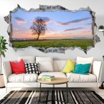 Vinyle mur de trou coucher de soleil sur le terrain 3d