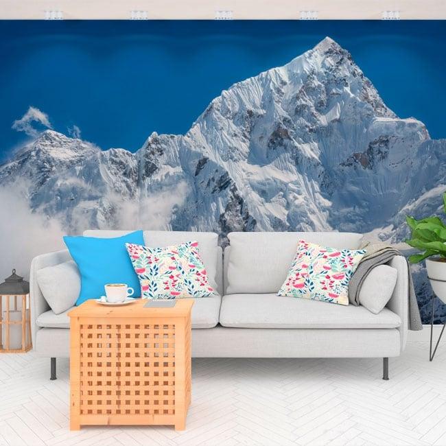 Peintures murales vinyle mont everest