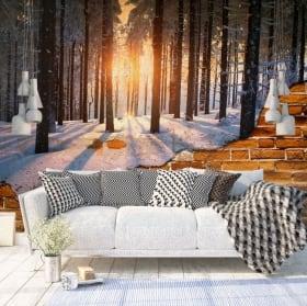 Peintures murales coucher de soleil en norvège mur cassé