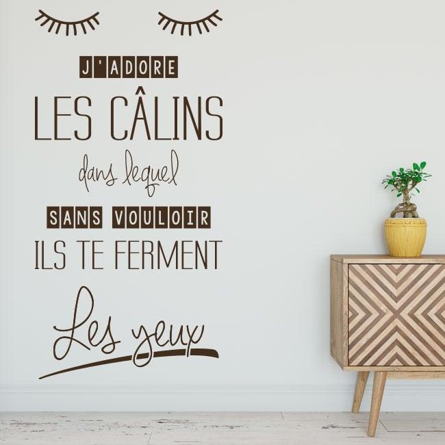 Vinyls phrases francaises j'aime les calins