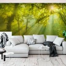 Murales de vinyle rayons de soleil dans la forêt