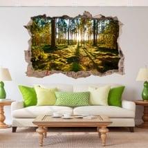 Autocollants décoratifs 3d coucher de soleil dans la forêt