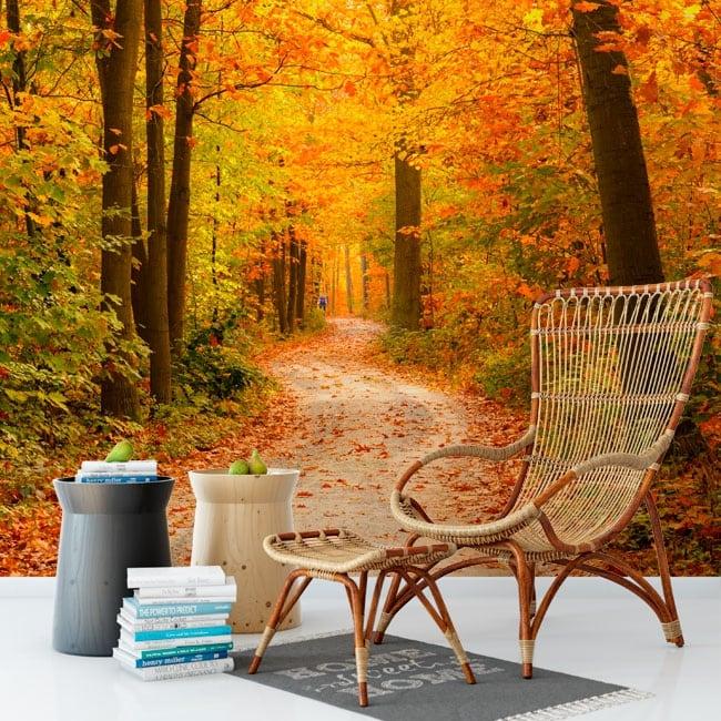 Murales de vinyle arbres en automne