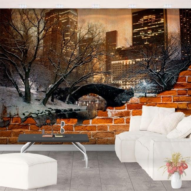 Murales central park à new york effet de mur brisé