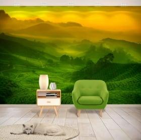 Murales de vinyle plantation de thé de malaisie