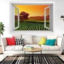 Vinyle décoratif fenêtre coucher de soleil dans le vignoble 3d