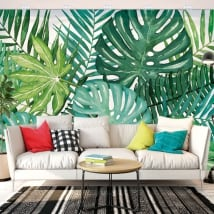 Photos murales vinyles les murs nature tropicale
