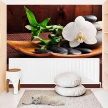 Peintures murales de vinyle au style zen