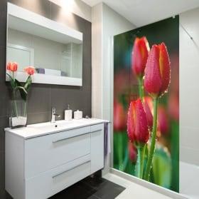 Vinyle pour les écrans fleurs de tulipes