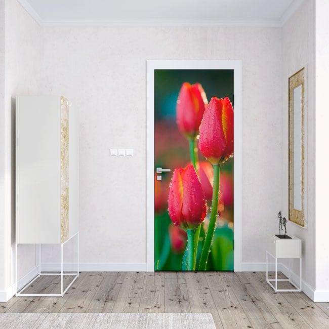 Vinyle et stickers pour portes fleurs tulipes