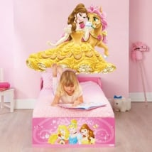 Vinyle enfants ou jeunes princesse et poney