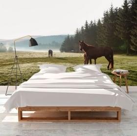 Papiers peints en vinyle cheval blanc